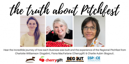 The Truth about Pitchfest